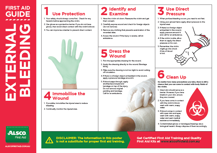 This is an image of Sizzling Printable Chart of First Aid Procedures